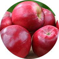 Glamour Apple
