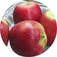 Karisma Apple