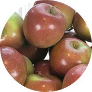 Kiss Apple